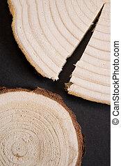 bois, annuel, anneaux, arrière-plan., section transversale, noir, bois, close-up., toqué, morceau