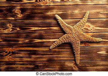 bois, brun, etoile mer, table