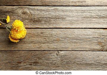 bois, chrysanthème, gris, table