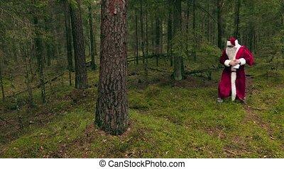 bois, claus, arbre, santa, fatigué