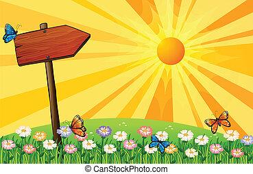bois, coucher soleil, enseigne, jardin