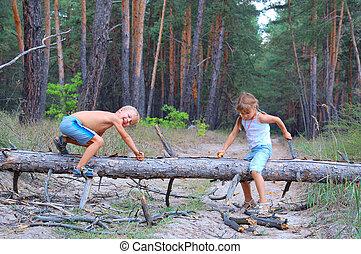 bois, enfants jouer