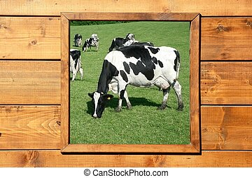 bois, fenêtre, pré, vache, vue