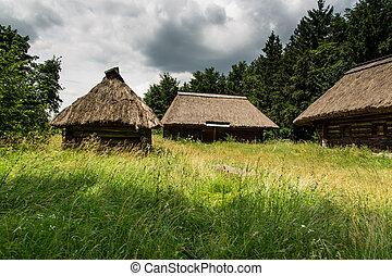 bois, ferme, ukraine, pyrohiv