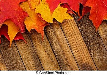 bois, feuilles automne, fond, automne