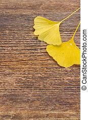 bois, feuilles, fond, automne