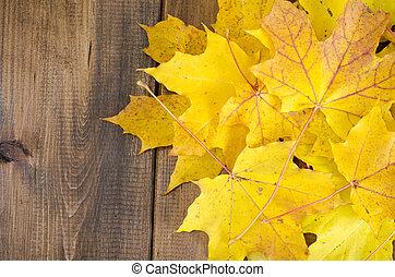 bois, feuilles, jaune, automne, table, érable