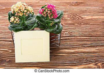 bois, fleurs, carte, fond