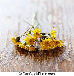 bois, fleurs ressort, fond, premier