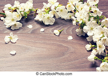 bois, fond, fleur, cerise, printemps, sur