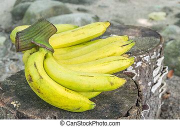 bois, frais, bananes, fond
