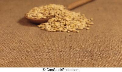 bois, grains, burlap., approximation, cuillère, débordement...