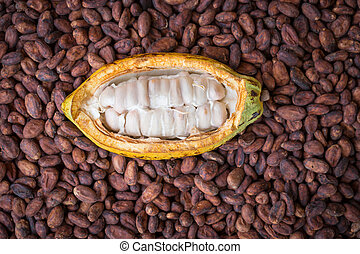 bois, haricots, fond, rustique, mûre, cacao, installation, ...