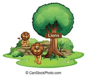 bois, lions, enseigne, deux