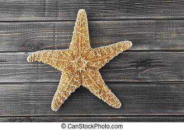 bois, mer, fond, étoiles