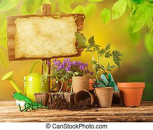 bois, outils, fleurs, jardinage, fond