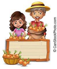 bois, paysan, planche, oignon, tenue