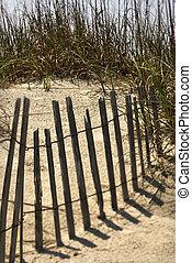 bois, plage., barrière, barrière