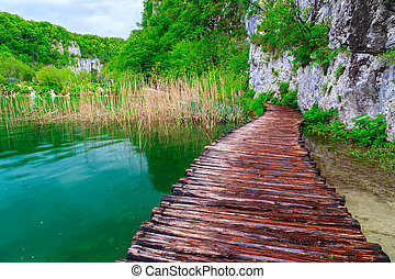 bois, plitvice, parc national, sentier