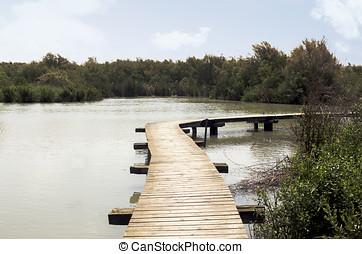 bois, ponts