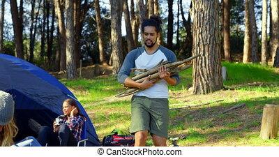 bois, porter, forêt, camp, homme, 4k, crosse