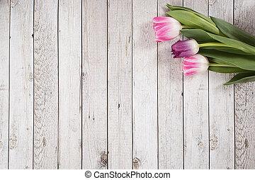 bois, printemps, tulipes, cadre, papillons, fond