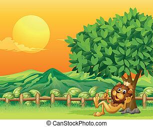 bois, roi, intérieur, lion, barrière