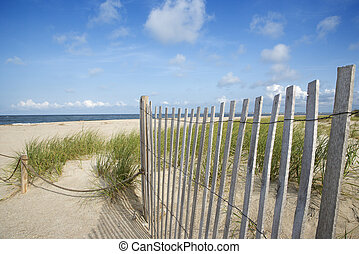 bois, sable, barrière, a mûri, dune.