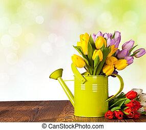 bois, tulipes, planches, coloré