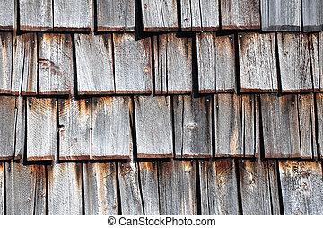 Zona, coup, haut, fond, fin photographie de stock