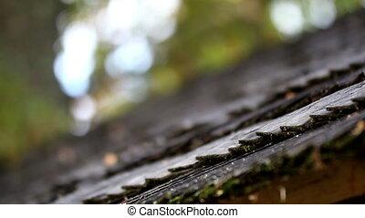 bois, zona, noir, toit