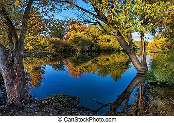 Trees with colored leaves in the Fall along the Boise river
