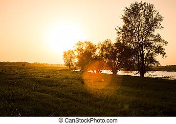 bojiště, dále, západ slunce
