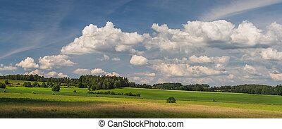 bojiště, nebe, les, mračno, krajina, konzervativní