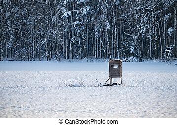 bojiště, sněžný, slepý, zima, honba