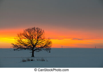 bojiště, zima
