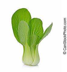 bok choy, (chinese, cabbage), aislado, blanco