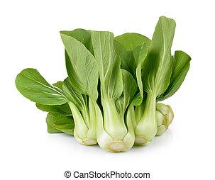 bok choy, vegetal, blanco, plano de fondo