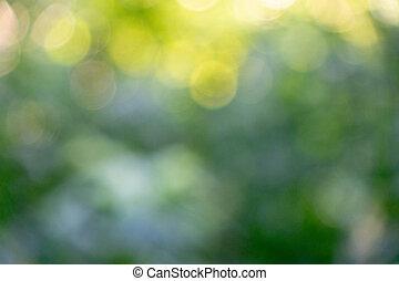 bokeh, baggrund., slør, grønne, naturlig, baggrund, i, grønt løvværk
