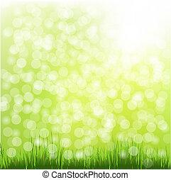 bokeh, erba, verde