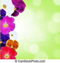 bokeh, fleur, frontière