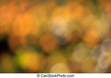 bokeh, fond, automne