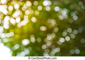 bokeh, licht, fokus, hintergrund