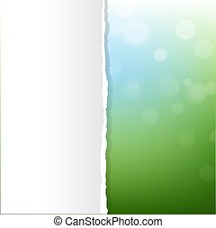 bokeh, sfondo verde, natura