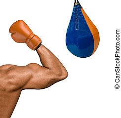 bokser, muskularny