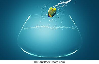 bol, sauter, angelfish, autre