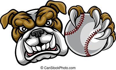 bola, buldogue, cão, esportes, basebol, segurando, mascote