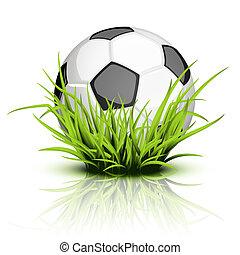 bola futebol, ligado, refletir, capim