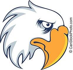 Bold eagle bird