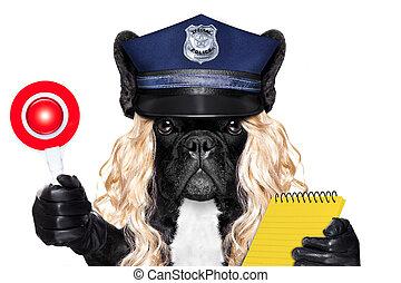 boleto, mujer policía, multa, perro